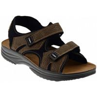 Sapatos Homem Sandálias Inblu  Multicolor