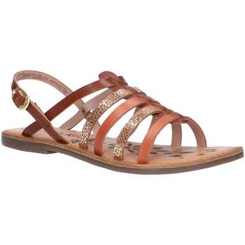 Sapatos Rapariga Sandálias Kickers 695573-30 DIXON Marr?n