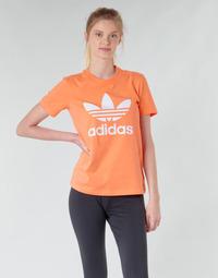 Textil Mulher Sweats adidas Originals TREFOIL TEE Laranja