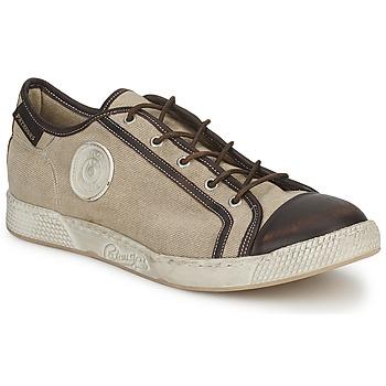 Sapatos Homem Sapatilhas Pataugas JOKE T Bege