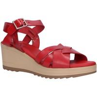 Sapatos Mulher Sandálias Kickers 775740-50 WIDJIK Rojo