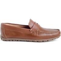 Sapatos Homem Mocassins Myers 81365 (14.147) Castanho