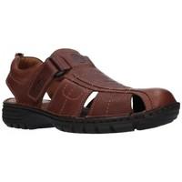 Sapatos Homem Sandálias T2in R-2071 Cofee Hombre Marron marron