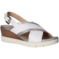 Sapatos Mulher Sandálias Geox D928AB 085NF D MARYKARMEN PLUS Blanco