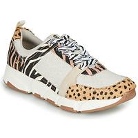 Sapatos Mulher Sapatilhas Gioseppo CREAZZO Leopardo