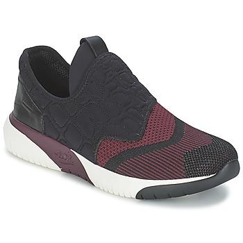 Sapatos Mulher Sapatilhas Ash SODA Bordô