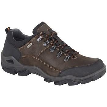 Sapatos Homem Sapatos de caminhada Imac  Marrom Escuro