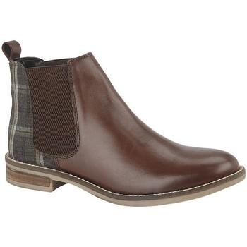 Sapatos Mulher Botins Cipriata  Marrom Escuro