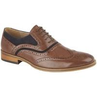 Sapatos Homem Richelieu Goor  Brown