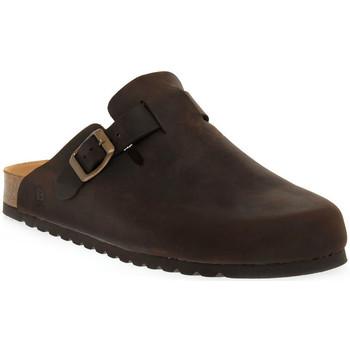Sapatos Mulher Tamancos Bioline 1900 MORO INGRASSATO Marrone