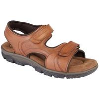 Sapatos Homem Sandálias Roamers  Tan