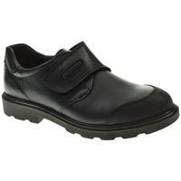 Sapatos Rapaz Sapatos & Richelieu Pablosky 715420 Azul
