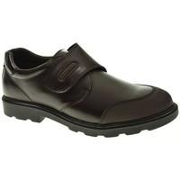 Sapatos Rapaz Sapatos & Richelieu Pablosky 715490 Marrón