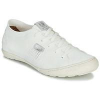 Sapatos Mulher Sapatilhas PLDM by Palladium GLORIEUSE Branco