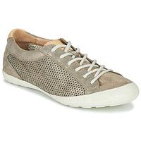 Sapatos Mulher Sapatilhas PLDM by Palladium GRACIEUSE ALX Ouro