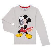 Textil Rapaz T-shirt mangas compridas TEAM HEROES  MICKEY Cinza