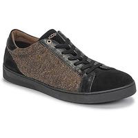 Sapatos Homem Sapatilhas Kost CYCLISTE 55 Preto / Castanho