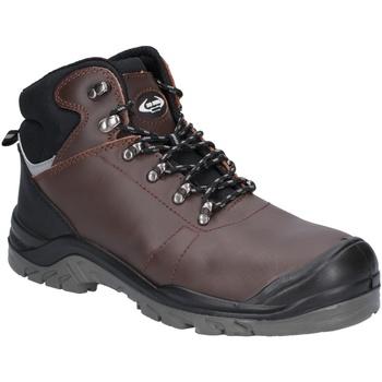 Sapatos Homem Sapato de segurança Amblers  Brown