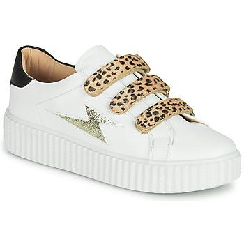 Sapatos Mulher Sapatilhas Vanessa Wu BASKETS À SCRATCHS ANIMALIER Branco / Leopardo