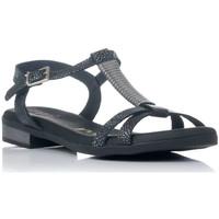 Sapatos Mulher Sandálias Zapp 4656 Preto