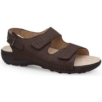 Sapatos Homem Sandálias Calzamedi SANDÁLIAS  BECHAMP CASTANHO