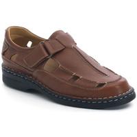 Sapatos Homem Sandálias Calzamedi SANDÁLIAS  GIOTTO CASTANHO