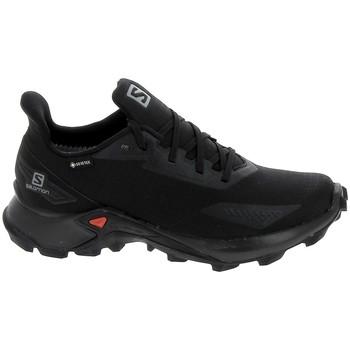 Sapatos Sapatilhas Salomon Alphacross Blast GTX Noir Preto
