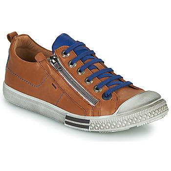 Sapatos Rapaz Sapatilhas GBB STELLIO Castanho