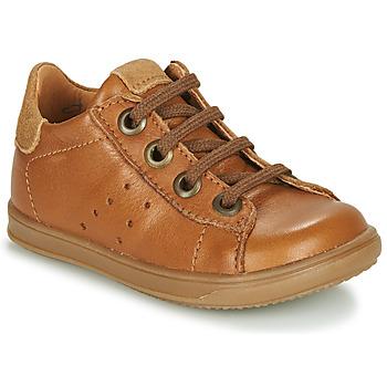 Sapatos Rapaz Sapatilhas Little Mary DUSTIN Conhaque