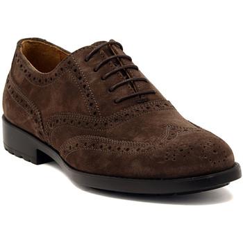 Sapatos Homem Sapatos Marco Ferretti NEWPORT BROWN Multicolore