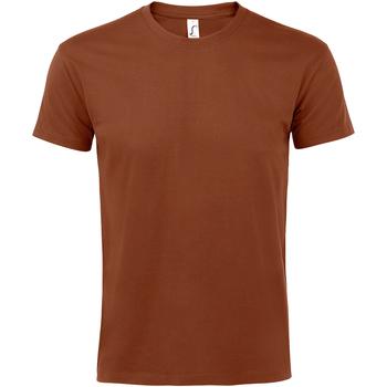 Textil Homem T-Shirt mangas curtas Sols 11500 Terracotta