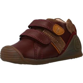 Sapatos Rapariga Sapatilhas Biomecanics 191153 Vermelho