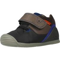 Sapatos Rapaz Botas baixas Biomecanics 191156 Cinza