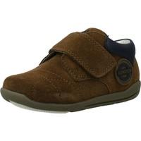 Sapatos Rapaz Sapatilhas Chicco GAETANO Marron