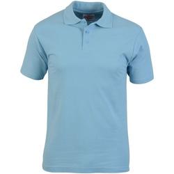 Textil Homem Polos mangas curta Absolute Apparel  Azul claro