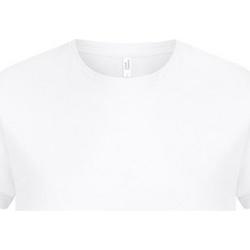 Textil Homem T-Shirt mangas curtas Casual Classics  Branco