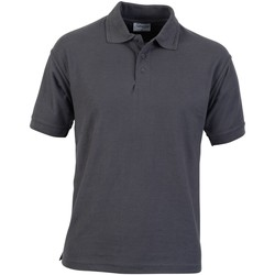 Textil Homem Polos mangas curta Absolute Apparel  Cinza do comboio