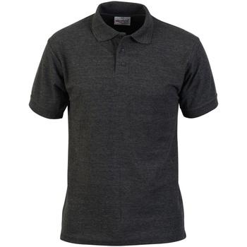 Textil Homem Polos mangas curta Absolute Apparel  Carvão vegetal