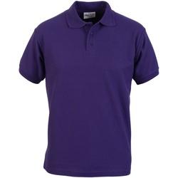 Textil Homem Polos mangas curta Absolute Apparel  Púrpura