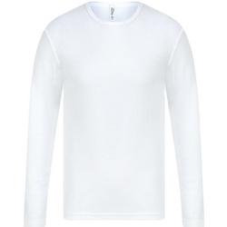 Textil Homem T-shirt mangas compridas Absolute Apparel  Branco