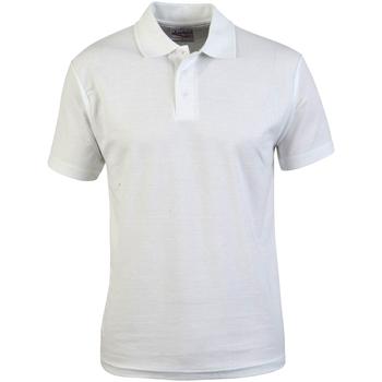 Textil Homem Polos mangas curta Absolute Apparel  Branco