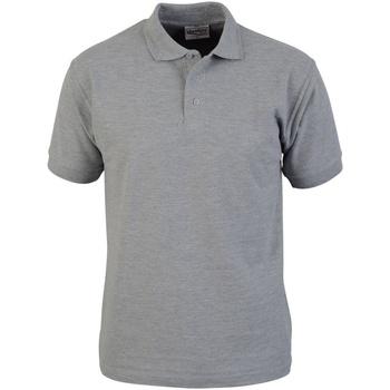 Textil Homem Polos mangas curta Absolute Apparel  Sport Grey