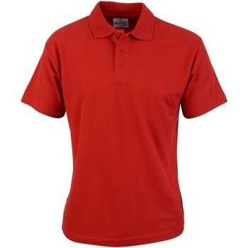 Textil Homem Polos mangas curta Absolute Apparel  Vermelho