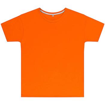 Textil Criança T-Shirt mangas curtas Sg SGTEEK Orange