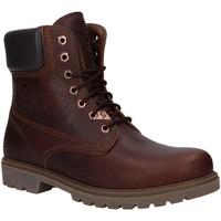 Sapatos Homem Botas baixas Panama Jack PANAMA 03 WOOL C18 Marr?n