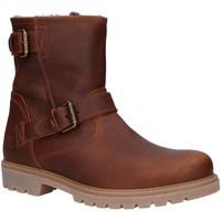 Sapatos Homem Botas baixas Panama Jack FAUST IGLOO C25 Marr?n
