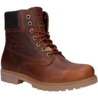 Sapatos Homem Botas baixas Panama Jack PANAMA 03 IGLOO C30 Marr?n