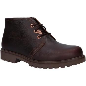 Sapatos Homem Botas baixas Panama Jack BOTA PANAMA IGLOO C31 Marr?n