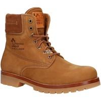 Sapatos Homem Botas baixas Panama Jack PANAMA 03 IGLOO C33 Marr?n