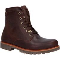 Sapatos Homem Botas baixas Panama Jack P03 THUNDER C6 Marr?n